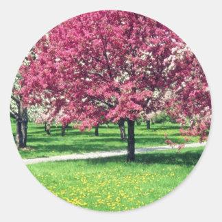Flores rosadas de los árboles florecientes etiquetas
