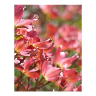Flores rosadas de papel de la primavera del Dogwoo Membrete A Diseño