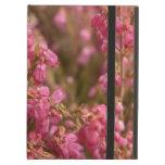Flores rosadas del brezo
