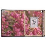 Flores rosadas del brezo iPad carcasas