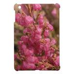 Flores rosadas del brezo iPad mini cárcasa