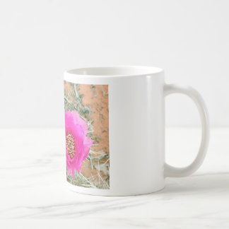 Flores rosadas del cactus en la floración taza de café
