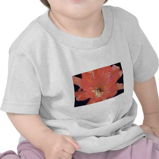 Flores rosadas del cirio (Hylocereus spp.) Camisetas