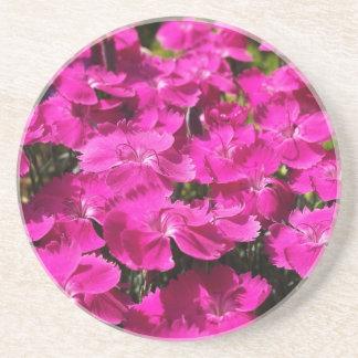 Flores rosadas del clavel posavasos para bebidas