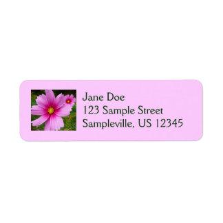 Flores rosadas del cosmos etiqueta de remite