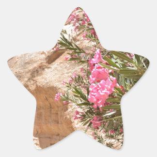 Flores rosadas del desierto pegatina