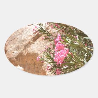 Flores rosadas del desierto pegatina ovalada