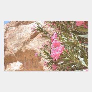 Flores rosadas del desierto pegatina rectangular