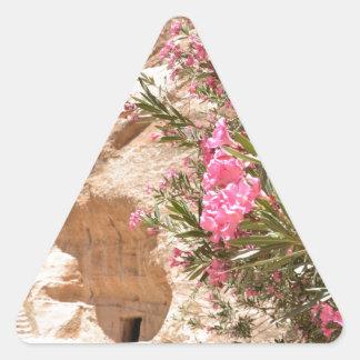 Flores rosadas del desierto pegatina triangular