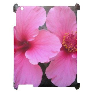 Flores rosadas del hibisco