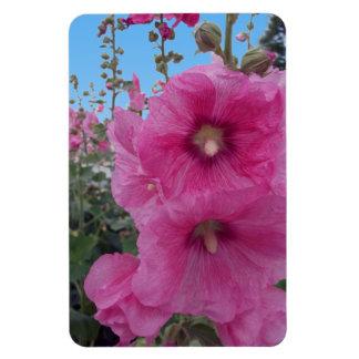 Flores rosadas del hibisco imán de vinilo