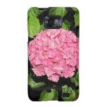 Flores rosadas del Hydrangea Samsung Galaxy S2 Carcasas