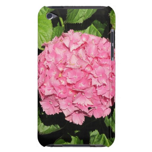 Flores rosadas del Hydrangea iPod Touch Case-Mate Fundas
