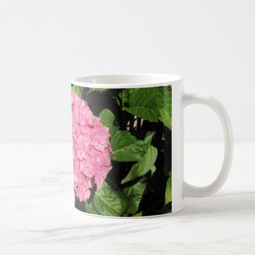 Flores rosadas del Hydrangea Taza