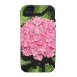 Flores rosadas del Hydrangea Vibe iPhone 4 Funda