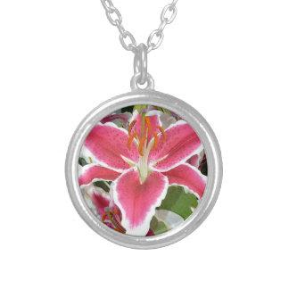 Flores rosadas del lirio del stargazer collares personalizados