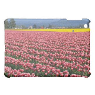 Flores rosadas del paisaje del valle de Skagit