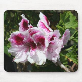 Flores rosadas del Pelargonium Tapete De Ratón