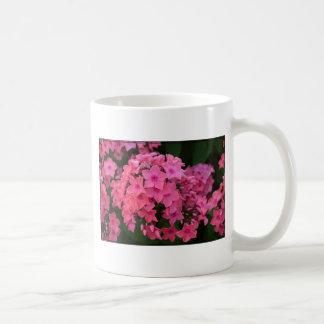 Flores rosadas del Phlox Tazas De Café
