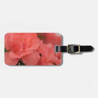 flores rosadas del rododendro etiquetas maletas
