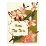 Flores rosadas del vintage que casan reserva la fe tarjeta postal
