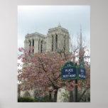 Flores rosadas en Notre Dame Posters