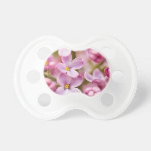Flores rosadas hermosas de la orquídea chupetes para bebés