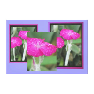 Flores rosadas lona envuelta para galerias