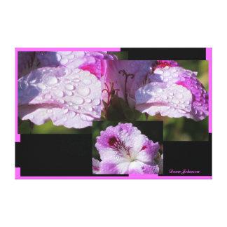 Flores rosadas lona envuelta para galerías