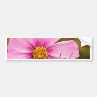 Flores rosadas phtographed por Tutti Pegatina Para Auto