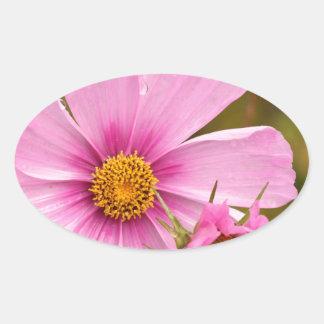 Flores rosadas phtographed por Tutti Pegatina Ovalada