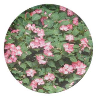Flores rosadas platos