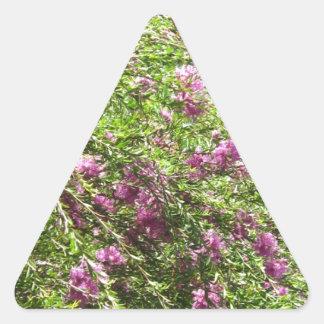 Flores rosadas preciosas pegatina triangular