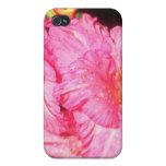 Flores rosadas rizadas rosa iPhone 4 cárcasas