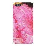 Flores rosadas rizadas rosa iPhone 5 fundas
