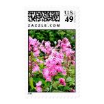 Flores rosadas sello
