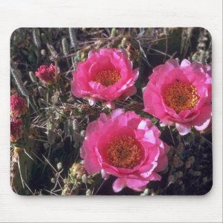 Flores rosadas alfombrillas de ratones