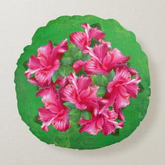 Flores rosadas tropicales del hibisco