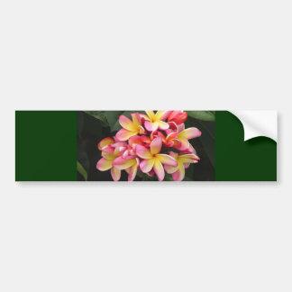 Flores rosadas y amarillas del Plumeria Pegatina Para Auto