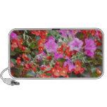 Flores rosadas y anaranjadas laptop altavoces