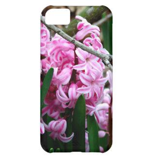 Flores rosadas y blancas del jacinto funda para iPhone 5C