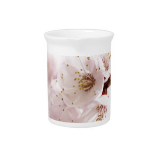 Flores rosados de la primavera jarrones