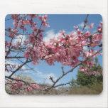 Flores rosados de la primavera tapetes de raton