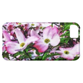 Flores rosados del Dogwood Funda Para iPhone 5C