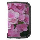 Flores rosados del hydrangea planificador
