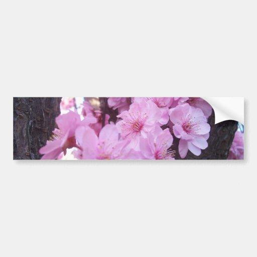 Flores rosados del melocotón pegatina para auto