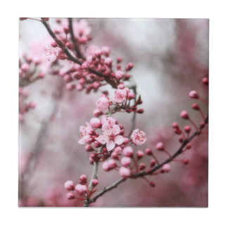 Flores rosados en foto de la primavera azulejo cuadrado pequeño