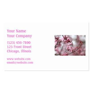 Flores rosados en foto de la primavera tarjetas de visita