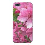 Flores rosados iPhone 5 cárcasas