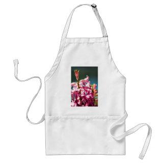 Flores rosados Sunlit del jacinto que brillan inte Delantal